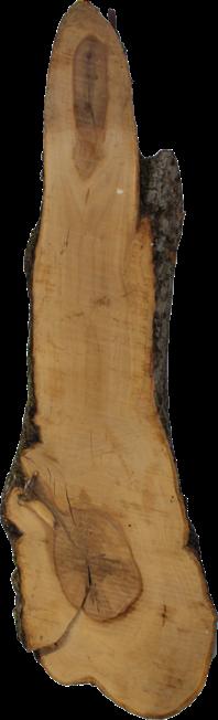 Unikat - Dekobrett groß Apfelbaum